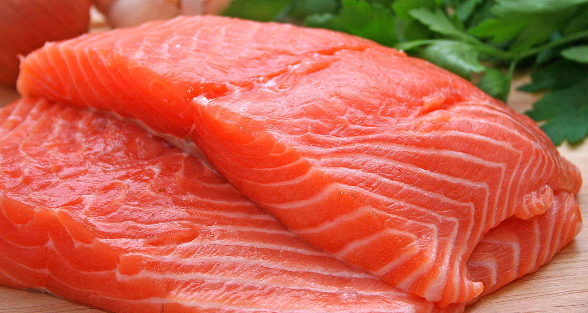 Fondo salmon 2